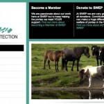 SWEP Website