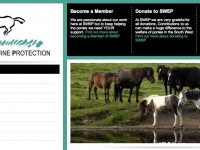 SWEP (South West Equine Protection)